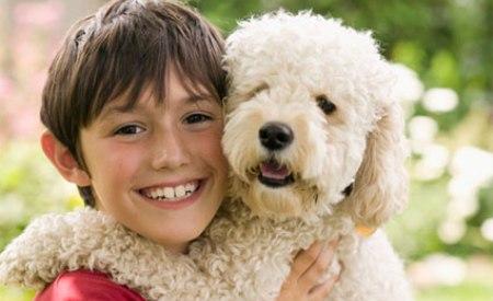 Beneficios de un perro para un niño