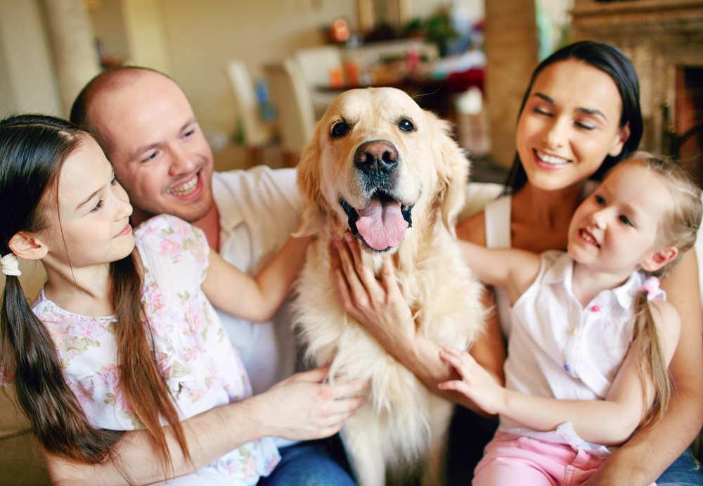 Consejos para tu mascota en una comunidad de vecinos