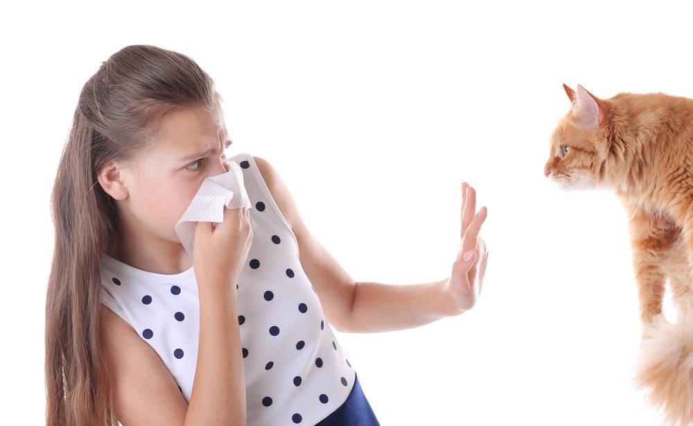 Alergias a los Animales en los Niños