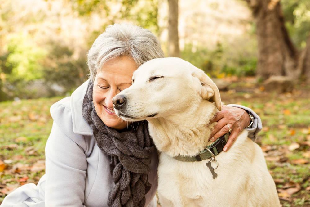 Los beneficios de tener un perro durante la jubilación