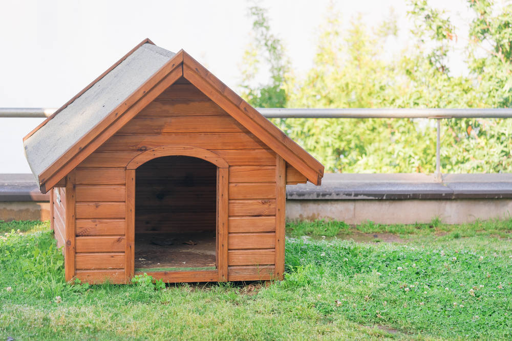 Los mejores materiales para las casetas de perro